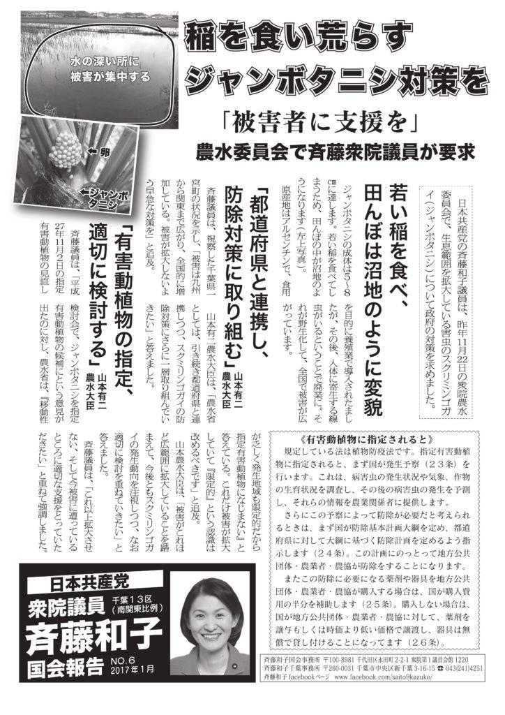 さいとう和子 国会報告 No.6